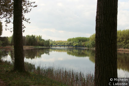 Brabantse Biesbosch