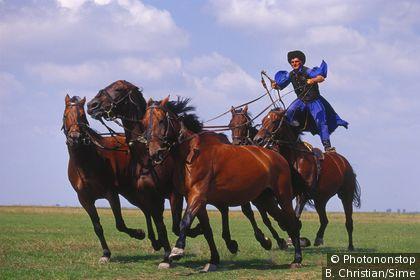 Equestrian feat