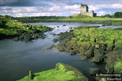 Galway, Dunguaire Castle, greenery and rocks