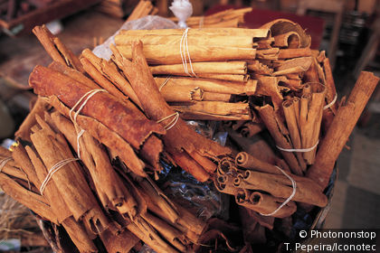 Cinnamon, local production