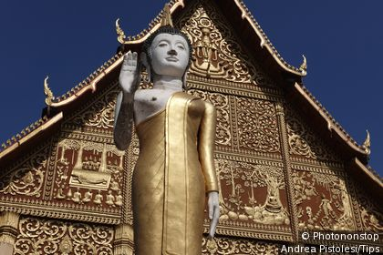 Laos, Vientiane, Pha That Luang Buddhist Stupa Temple, Statue