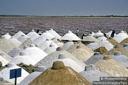 Salt extraction on Pink Lake, Senegal