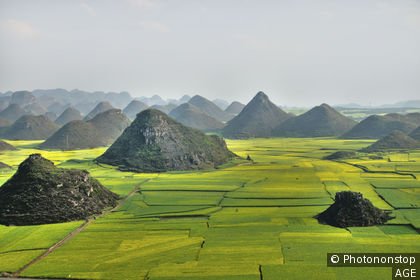 Fields in Yunnan province