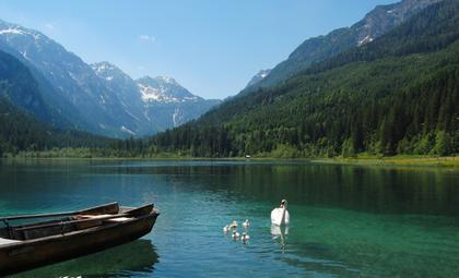 Jaegersee with swans