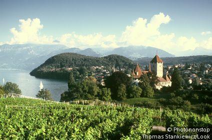 Spiez with Spiez castle at Lake Thun, Bernese Oberland, Switzerland
