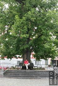Sur Gallusplatz.
