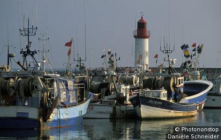 Ile d'oléron, port de pêche de la Cotinière, bateaux amarrés, phare
