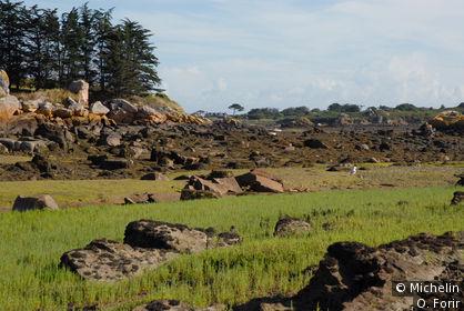 Sur l'île de Bréhat.