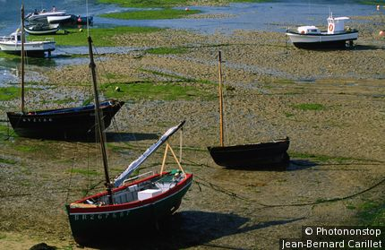 Fishing boats at low tide. Le Conquet, Brittany, France