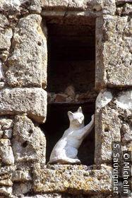 La cité des Chats