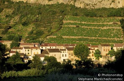 France, Pyrénées Orientales (66), Languedoc Roussillon, Tautavel