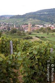Village et vignoble