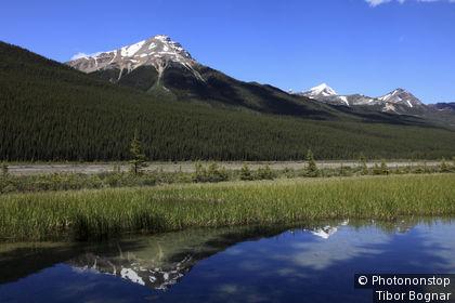 Canada, Alberta, Jasper National Park, rivière Sunwapta, Winston Churchill Range