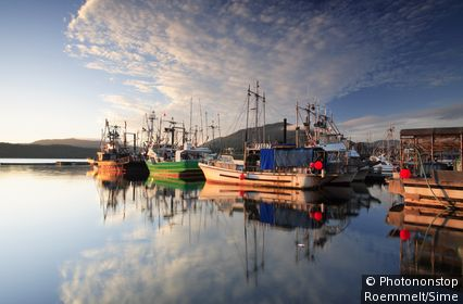 Canada, Colombie-Britannique, Prince Rupert, Océan Pacifique - Fishing boats in the harbour, Kaien Island