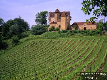 Vignoble de Madiran au pied du château de Arricau-Bordes