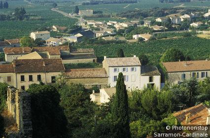 84. Vue plongeante sur Chateauneuf du Pape, maisons, vignes verdoyantes