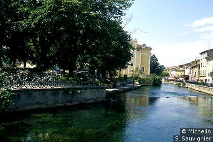 L'Isle-sur-la-Sorgue : quai ombragés de la Sorgue