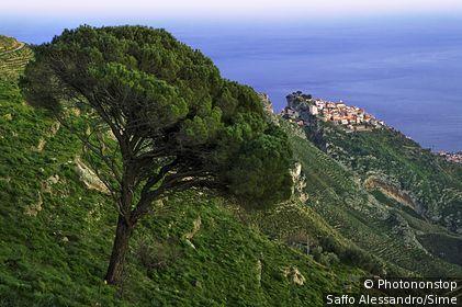 Italie, Sicile , Castelmola, Zone Méditerranéenne, Province de Messina - View from Monte Veneretta