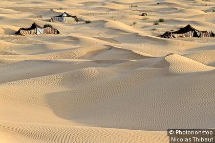 Tunisie, gouvernorat de Kébili, region du Nefzaoua, campement nomade sur les dunes de Jebil (region de Douz)
