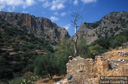 Greece, Crete, Kritsa, ruins of an abandoned house