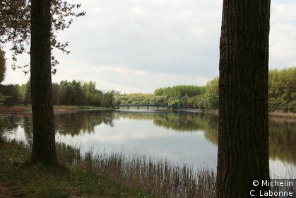 Le Biesbosch