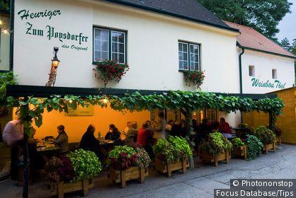 Autriche, Basse-Autriche, Poysdorf, Weinviertel - Kellergasse