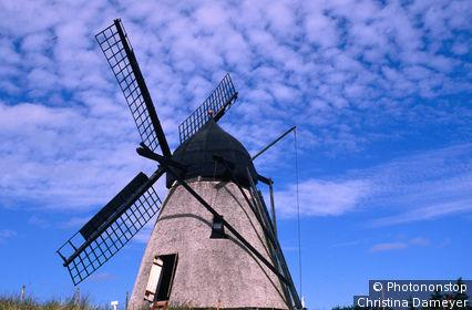 Denmark, Scandinavia, Skagen, Windmill in rural Skagen.