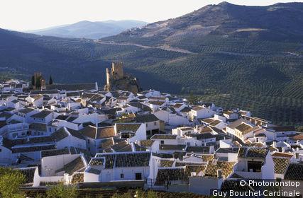 Vue du village de Espejo et les champs d'oliviers