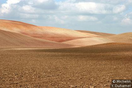 Un champ labouré dans les environs de medina-Sidona