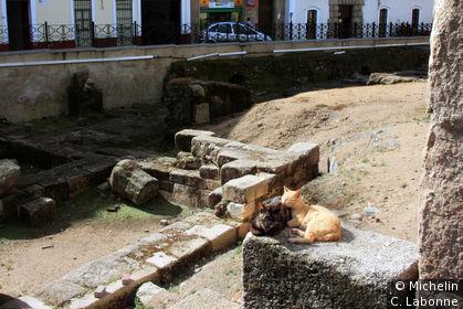 Deux chats dormant à l'ombre du temple de Diane