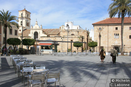 Ombre de palmiers sur la Plaza Mayor