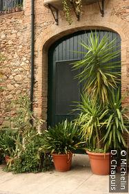 Plantes devant une maison