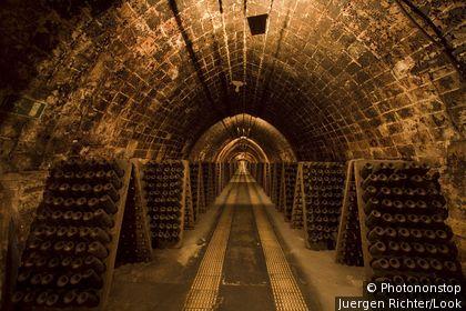 Codorniu, cava cellars, Sant Sadurni d Anoia, near Barcelona, Spain