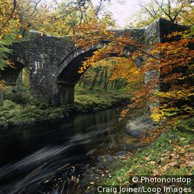 England, Devon, Ashburton. Autumn colours by Holne Bridge over the River Dart in Dartmoor National Park.
