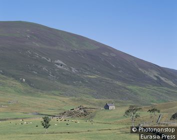 Scotland, Grampian, Braemar, Glen Clunie / Brick Farmhouse & Rugged Hills