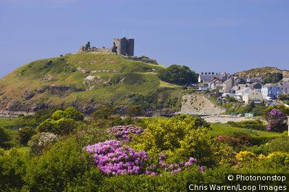 Wales, Gwynedd, Criccieth. Criccieth Castle on a hill overlooking the town.