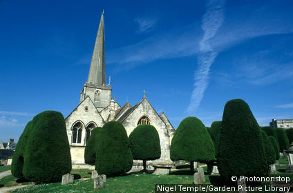 graveyard garden with yew trees st mary's parish church. painswick. gloucestershire