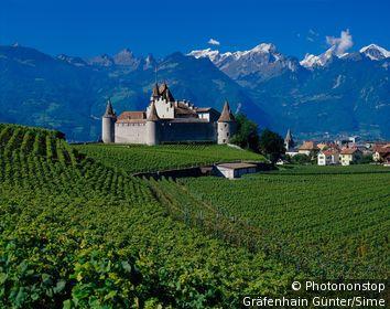 Switzerland / Vaud / Aigle / Aigle castle and vineyard