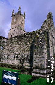 Ireland, Republic of Ireland, Munster, Ennis, Exterior of Ennis Friary
