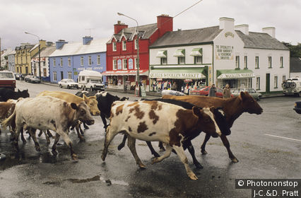 Irlande, comté de Kerry, péninsule d'Iveragh,