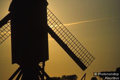 Niederlande, s-Hertogenbosch, Windmühle, Silhouette, Detail, Sonnenuntergang Holland, am Wilhelmskanal, Mühle, Dämmerung, Abend, Stimmung, Sehenswürdigkeit, Landwirtschaft, Getreide, mahlen, Silhouette, romantisch, stimmungsvoll, typisch