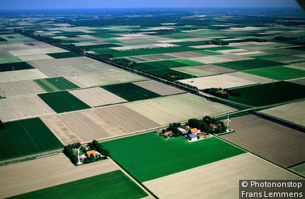 Netherlands, Flevoland, Lelystad, Aerial of rural fields.
