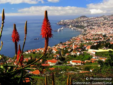 Ilha de Madeira, Funchal, Harbor.