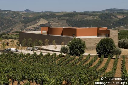 Portugal; Simao; Sabrosa; ?Portal? Winery; Portal Winery Sabrosa Quinta Do Portal. Sabrosa Portugal 2008; CY:2008; Architect: Alvaro Siza
