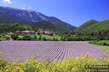 Alpes du sud tourisme voyages cartes - Office du tourisme deux alpes ...