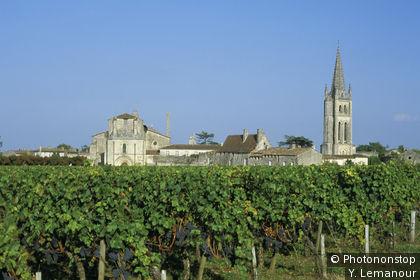 St-Emilion, vue générale depuis les vignes verdoyantes
