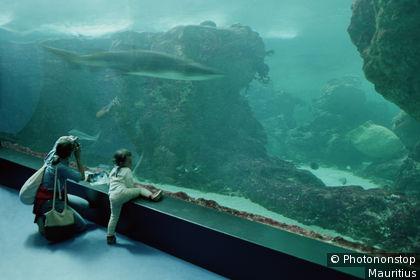 Oceanopolis Aquarium