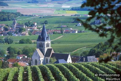 Montagne de Reims, Ville-Dommange