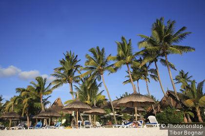 Mauritius, Trou aux Biches, plage, palmiers