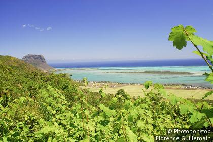 Ile Maurice, Chamarel, vue panoranique sur le lagon et la montagne du Morne